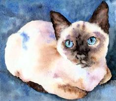 Siamese cat painted by Christy Freeman