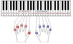 Piano Music, My Music, Sheet Music, Piano Lessons, Music Lessons, Keyboard Lessons, Piano Scales, Material Didático, Piano Tutorial