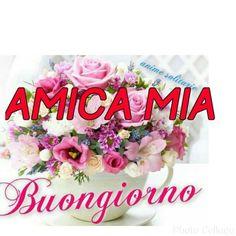 it Buongiorno Good Morning Coffee, Good Morning Good Night, Day For Night, Good Morning Quotes, Italian Greetings, Italian Humor, Italian Phrases, Happy Birthday Quotes, Flower Quotes