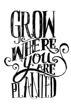 Grow Where You Are Planted by Matthew Taylor Wilson inspirational quote word art print motivational poster black white motivationmonday minimalist shabby chic fashion inspo typographic wall decor Daily Quotes, Great Quotes, Quotes To Live By, Inspirational Quotes, Motivational Quotes, Words Quotes, Wise Words, Me Quotes, Famous Quotes