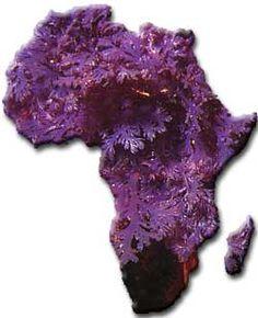 SeaweedAfrica :: Listing the African continent's Algae