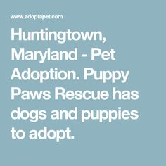 Huntingtown, Maryland - Pet Adoption. Puppy Paws Rescue has dogs and puppies to adopt.