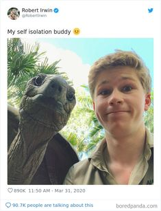Robert Irwin Shares A Selfie With His Isolation Buddy – A Tortoise Named Igloo Cute Funny Animals, Funny Cute, Really Funny, Stupid Funny Memes, Funny Relatable Memes, True Memes, Funny Stuff, Animal Pictures, Funny Pictures