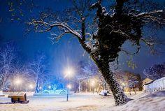 Fond Winter Park Snow Road Bureau gratuit