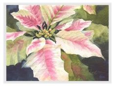 Houseplants for Better Sleep Poinsettia Watercolor Greeting Cards - Susie Short's Gift Gallery Watercolor Christmas Cards, Watercolor Cards, Watercolor Flowers, Watercolor Paintings, Flower Paintings, Watercolours, Christmas Paintings, Christmas Art, Christmas Leaves