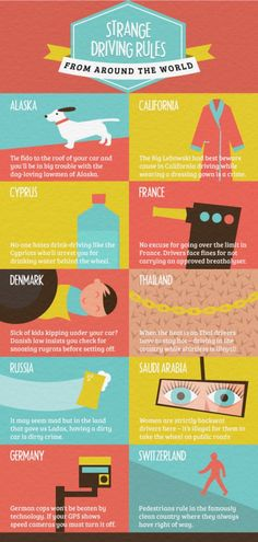 Strange Driving Rules from around the world | #Infographics repinned by #Piktochart