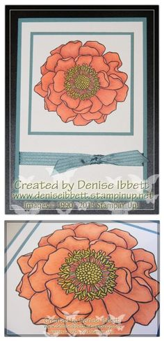 Blended bloom stamp with Stampin' Up! Blendabilities www.deniseibbett.stampinup.net
