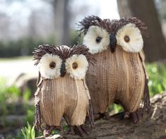 Owls #trend #winter