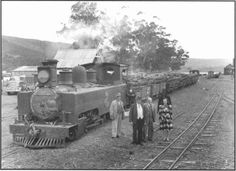 Narrow Gauge Forest Railroad in Knysna - South Western Railway Co Knysna, Cape Town, Old Photos, South Africa, Westerns, Military, History, Garden, Beautiful
