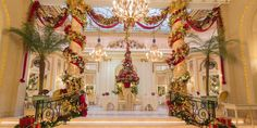 Enjoy traditional Afternoon Tea in the spectacular Edwardian wonderland set up in The Palm Court at The Ritz London in Piccadilly during the festive season. Christmas Look, Christmas Offers, London Christmas, Xmas, Christmas Pics, Christmas Design, Decoration Christmas, Holiday Decor, Christmas Displays