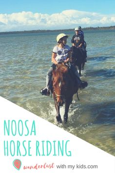 Noosa horse riding, things to do in Noosa, Noosa, Ausrtalia, Horse riding, Sunshine Coast, Things to do in Noosa