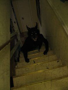 Makes me never want to walk down to a basement again.