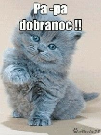 Good Night Wishes, Air France, Cringe, Baby Animals, Humor, Cats, Funny, Abstract, Pictures