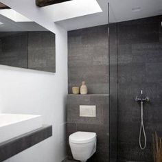 wall mounted toilet in shower - Google Search