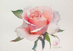 Watercolor Painting Techniques, Painting & Drawing, Watercolor Paintings, Watercolor Landscape, Acrylic Paintings, Watercolors, Watercolor Rose, Watercolor Illustration, Simple Watercolor