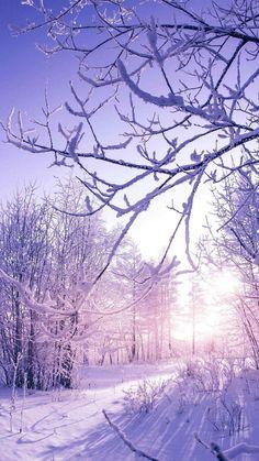 #winter ❄️