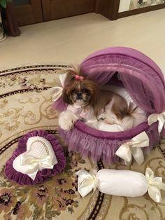 ballerina dog bed, lounger-bed for dogs lounger-bed for cats bed for dogs and cats elegant lounger-bed soft bed for pets Girl Dog Beds, Cute Dog Beds, Diy Dog Bed, Girl And Dog, Pet Beds, Cute Dogs, Designer Dog Beds, Designer Dog Clothes, Puppy Room