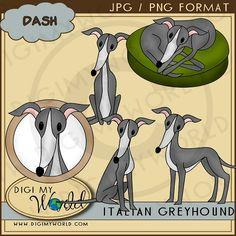 Dash - Italian Greyhound 1 - NE Digi My World Clip Art : Digi Web Studio, Clip Art, Printable Crafts & Digital Scrapbooking!