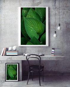 Grün Abstrakt Fotografie Download Laubblätter von FotokunstVonAlex