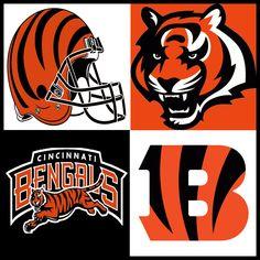 Cincinnati Bengals Logo through the years Colts Memes, Animal Habitats, American Sports, Cincinnati Bengals, Football Helmets, Ohio, Nfl, Old Things, Logos