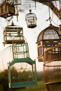 Ever since reading We Were the Mulvaneys by Joyce Carol Oates, I've wanted a sunny kitchen with a beautiful antique birdcage full of song birds.