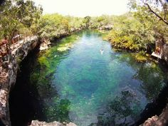 Fotos de la semana: Cenote Jardín del Edén, Quintana Roo   México Desconocido