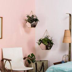 Terrarium Geometrical planter Hanging Planter indoor