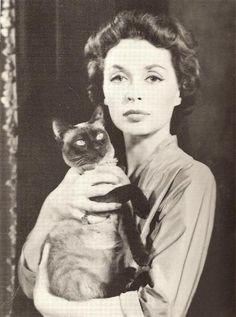 Lilli Palmer 猫 cat แมว シャム猫 Siamese วิเชียรมาศ Siamese Dream, Siamese Cats, Cats And Kittens, Crazy Cat Lady, Crazy Cats, I Love Cats, Cool Cats, Patricia Highsmith, Celebrities With Cats