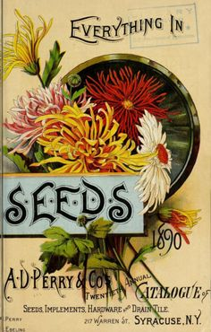 1890 - A. D. Perry & Co.'s twentieth annual catalogue of flower, field and garden seeds, implements and drain tile, &c. / - Biodiversity Heritage Library