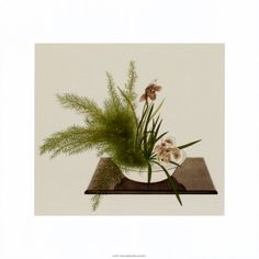 Japanese Art, Canvas Art and Posters at Art.com