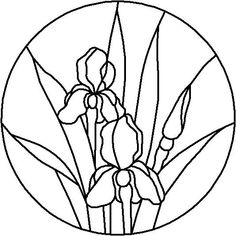 Image result for black and white iris flower in circle