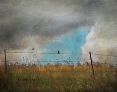 jamie heiden Today's the Day . now's the time. What are you waiting for?