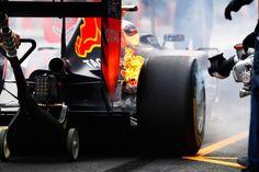 2016 Japanese GP - Max Verstappen (Red Bull)
