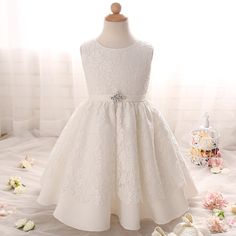 Lace prom dresses children's girl ball gowns dress party frocks flower girl dresses for weddings FGD10045