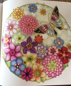 Adult Coloring Books Colouring Journal Inspiration Johanna Basford Art Deco Butterfly Colour Book Nature