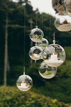 If you're looking for a unique wedding décor idea here are terrarium wedding ideas for rustic to romantic wedding from terrarium wedding favors to wedding centerpieces Hanging Terrarium, Hanging Succulents, Hanging Plants, Succulent Planters, Garden Terrarium, Terrarium Ideas, Wedding Centerpieces, Wedding Decorations, Decor Wedding