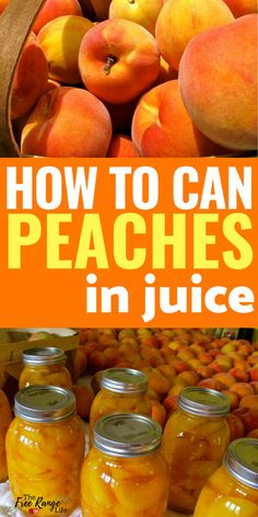Canned Peaches Food preservation- Canning Recipes- How to Can Peaches in juice- with no added sugar!Food preservation- Canning Recipes- How to Can Peaches in juice- with no added sugar! Home Canning Recipes, Canning Tips, Jam Recipes, Cooking Recipes, Pressure Canning Recipes, Canning Peach Recipes, Applesauce Recipes Canning, Cooking Pork, Pressure Cooking