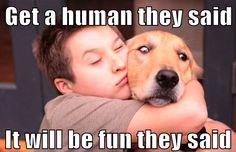 25 Funny Dog Memes: Part 2 - Dogtime