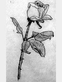 Karakalem Draw Drawing Tumblr Pencil Charcoal Woman Artwork Art Rose Gul Cizim Resim Cizim Egitimleri Cizimler Cizim