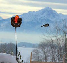 Natur hautnah erleben - Berghof Kinker im Allgäu