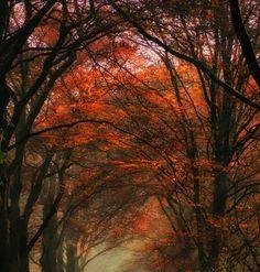 Photos by Robert Broeke | Faith is Torment | Art and Design Blog