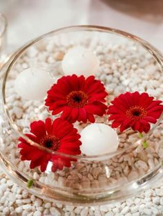 gerbera with water beads - Google Search