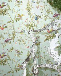 Humming Birds 04 från Cole & Son