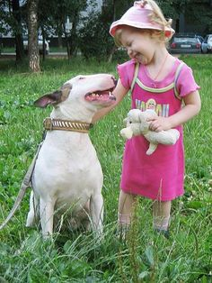 Friends:) so cute! - #Bullterrier #Dog