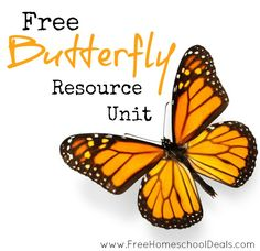 Free Butterfly Resource Unit | Free printables, unit studies, arts & crafts, videos, and more!