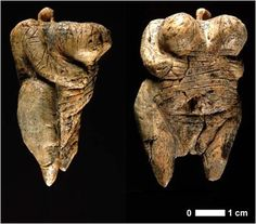 The Venus of Hohle Fels is an Upper Paleolithic Venus figurine dated to between and years ago, belonging to the early Aurignacian, and is the oldest undisputed example of Upper Paleolithic art and figurative prehistoric art in general. Venus, Statues, Art Pariétal, Paleolithic Art, Objets Antiques, Figurative Kunst, Art Occidental, Art Through The Ages, Ancient Goddesses
