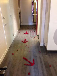 This Red Rose Petal Proposal was so amazingly elaborate that the bride was surprise 3 times in one night!