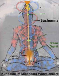 The Main Types of Yoga and Their Benefits Kundalini Yoga, Yantra Yoga, Yoga Meditation, Reiki, Chakra Images, Health Practices, Types Of Yoga, Mind Body Soul, Cool Stuff