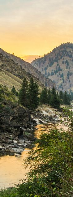 Salmon River, Idaho by Kerry Angelos Idaho, Places Around The World, Around The Worlds, Beautiful World, Beautiful Places, Rio, Wild Nature, Nature Pictures, Amazing Nature