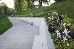 LANDSCAPE ARCHITECTURE : Photo